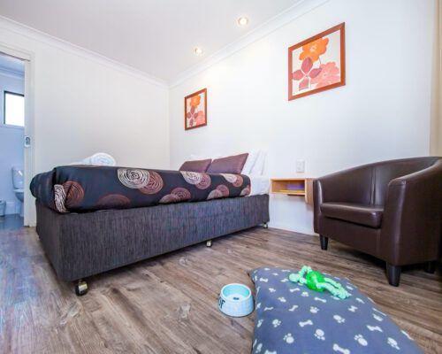 pet-friendly-accommodation-kingaroy-1